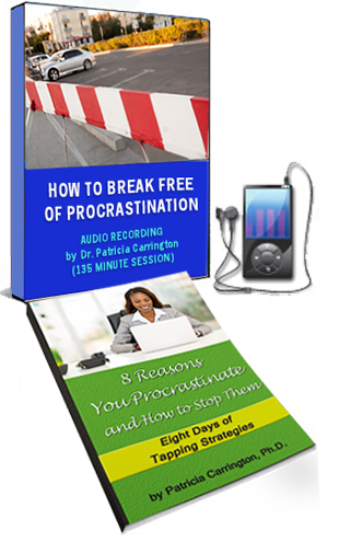 How to Break Free of Procrastination MP3 and eBook