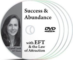 Success and Abundance with EFT & the Law of Attraction DVDs by Carol Look