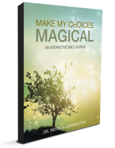 Make My Choices Magical: An Interactive Digital Daily Journal