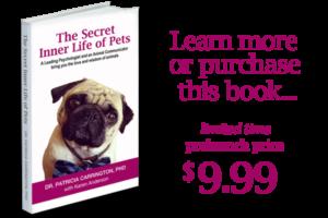 The Secret Inner Life of Pets